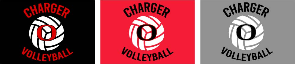Orion Volleyball